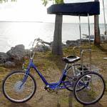 Go-Hub Sun e-trike & Electric-Bikes.com